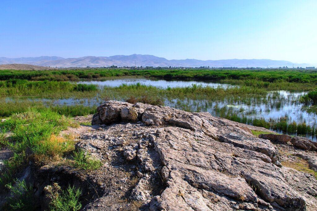 خبرنگاران 18 میلیون مترمکعب آب به چهار تالاب&zwnj نقده وارد شد