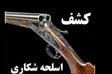 کشف 2000 اسلحه شکاری غیر مجاز در تهران